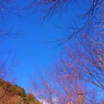 近畿地区最高峰 弥山  八経ヶ岳ピストン