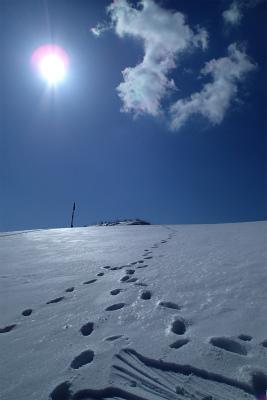 伊吹山 冬山訓練