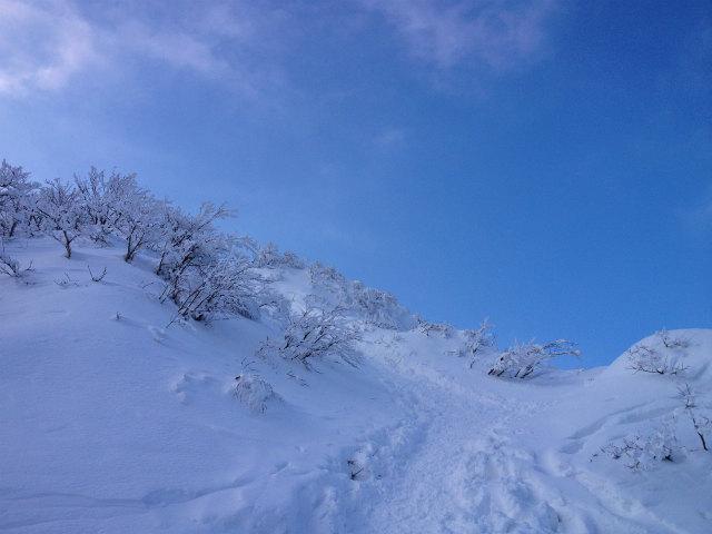 雪の大山で登り納め