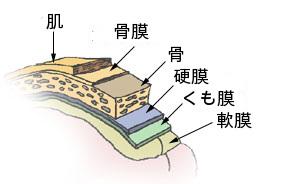 zuimakuen