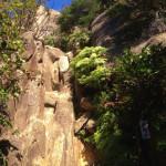 久々の六甲山ハイキングで迷走?